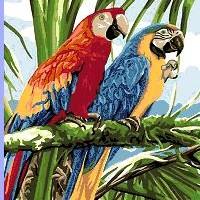 Perroquet tropical