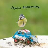 Carte  anniversaire  mésange et petite voiture, joyeux anniversaire,