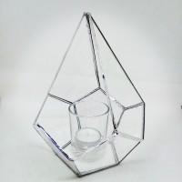 Terrarium transparent