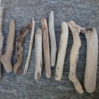 Lot de petits bois flottés - Origine Corse