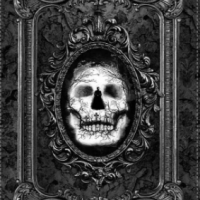 Panneau tissu 60 cm x 110 cm WICKED SKULL - Timeless Treasures