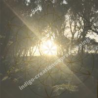 Fleur de Vie coucher de soleil forêt de chênes